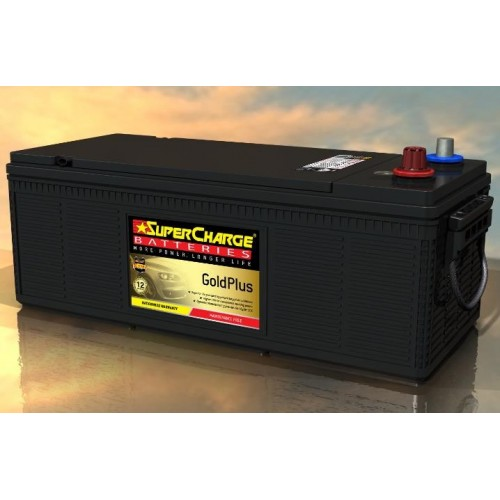 SuperCharge Gold Plus MFN94